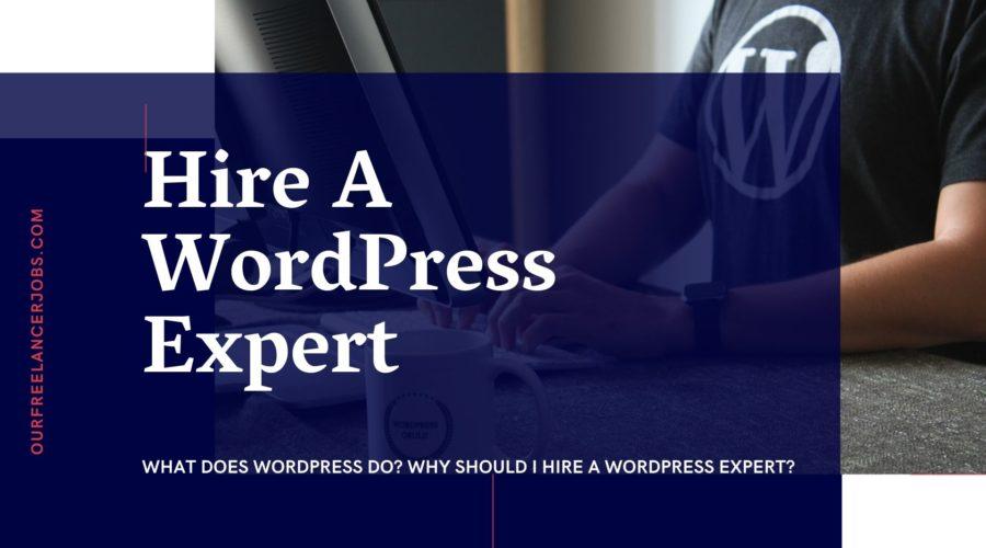 Hire A WordPress Expert